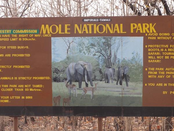 Mole NP Entrance